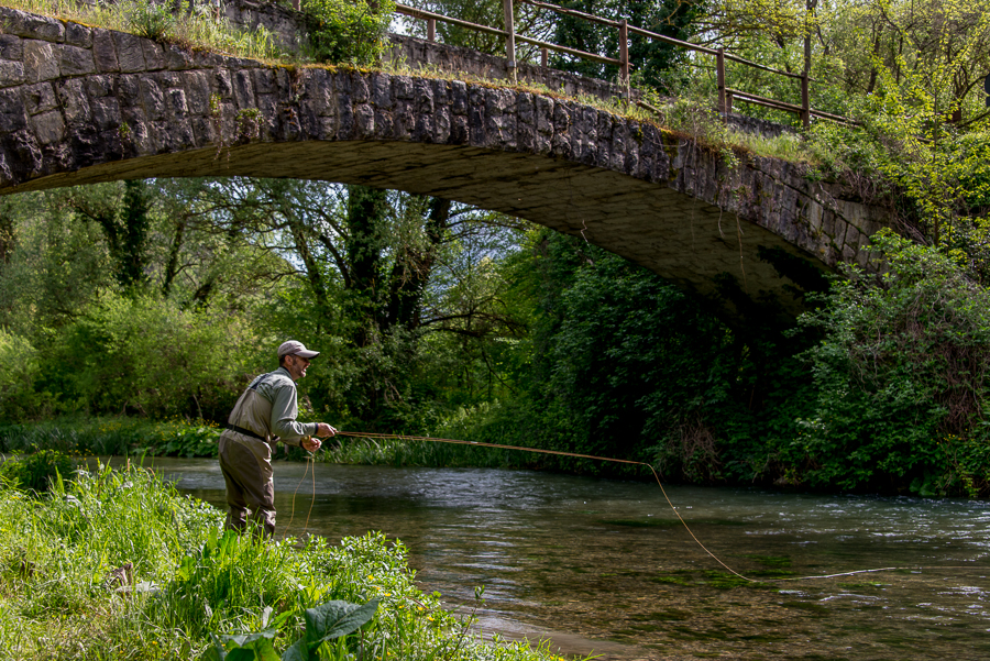 Watches and fly rods on pinterest for Fly fishing blue ridge ga