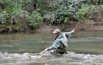 Oyster bamboo fly rods fly fishing images for Fly fishing blue ridge ga